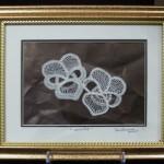 La dentelle aux fuseaux d'Ottawa - Deux orchidées
