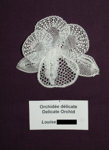 Orchidée délicate/ Delicate Orchid